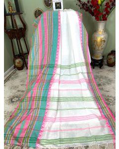 Cotton Begumpuri in White with Multicolored Border